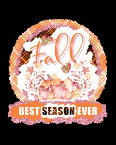 Fall Best Season, Pumpkin Harvest