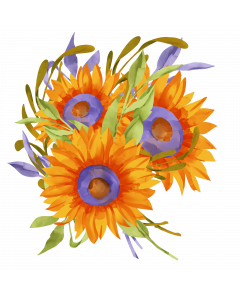 Sunflowers Watercolor Sublimation, Summer PNG