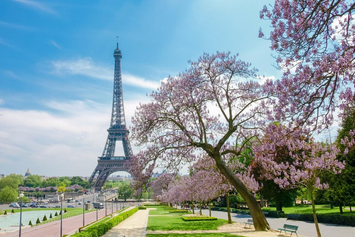 Eiffel Tower Photo | Coastal Business Supplies